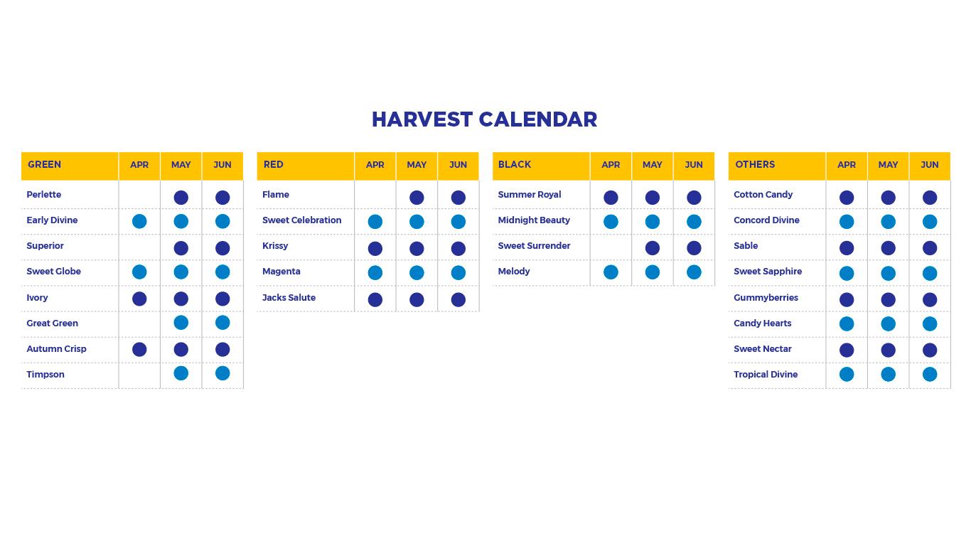 Calendario-Cosecha-EN