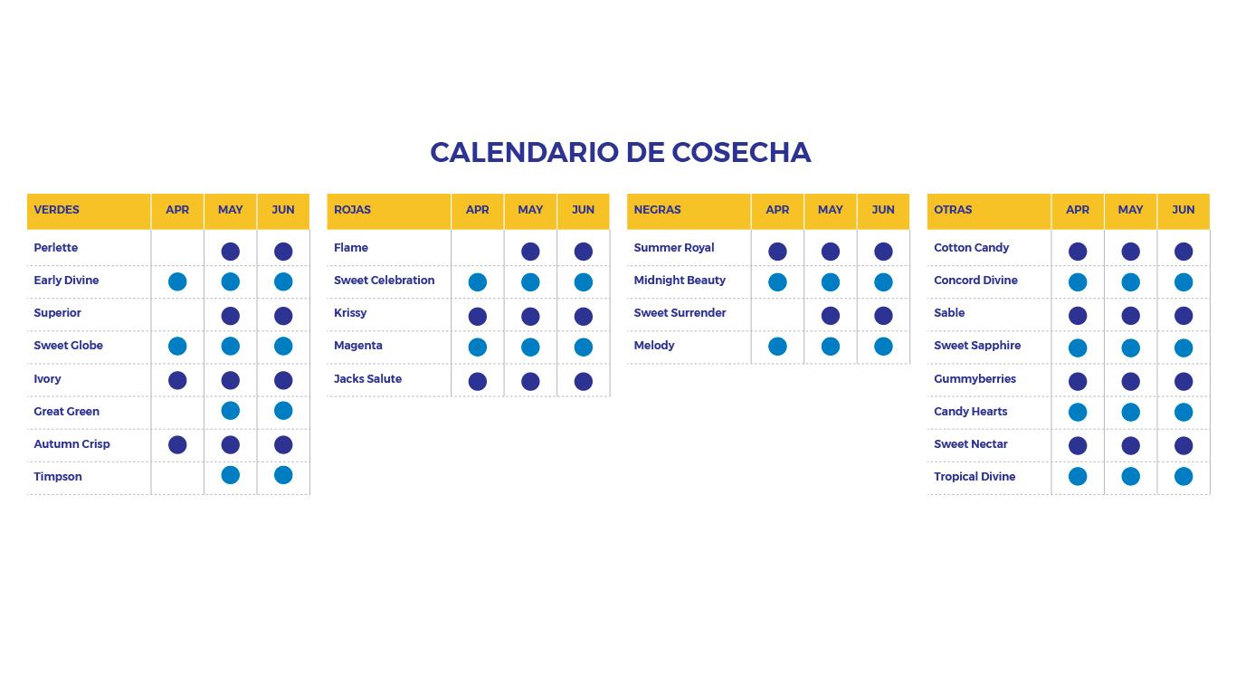 Calendario-Cosecha